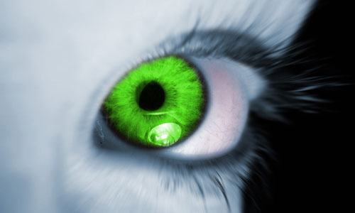 Insecurity and Jealousy: the Green-Eyed Monster